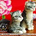 felt cat_羊毛氈貓咪x2_2