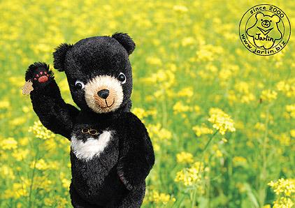 2013_小黑熊在花蓮1_吉安鄉1