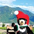 2013_小黑熊在花蓮2_吉安鄉2