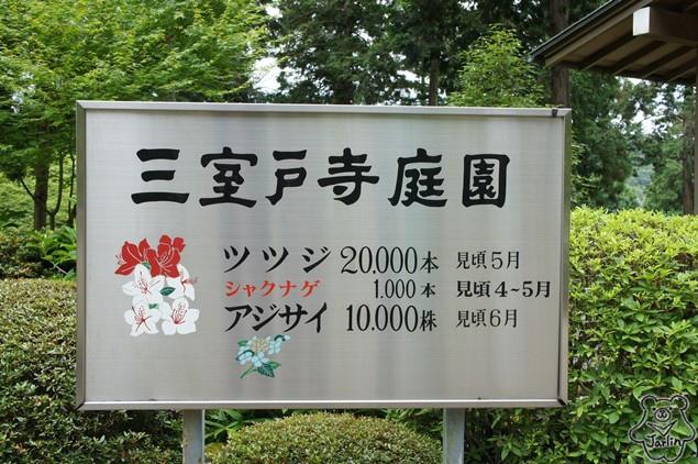 三室戶寺_08.JPG