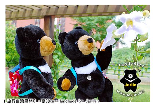 旅行台灣黑熊01