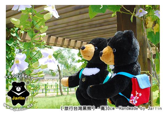 旅行台灣黑熊02