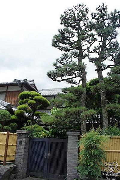 13_前往宇治上神社.JPG