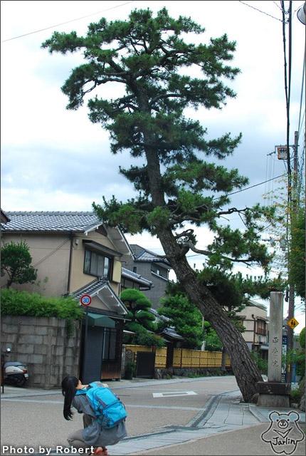 17_前往宇治上神社.jpg