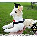 20130824_Nick的畢業服造型05