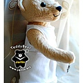 20130921_夫子熊Tzuting6_teddy bear