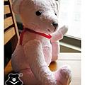 20131008_粉紅出生熊03_teddy bear