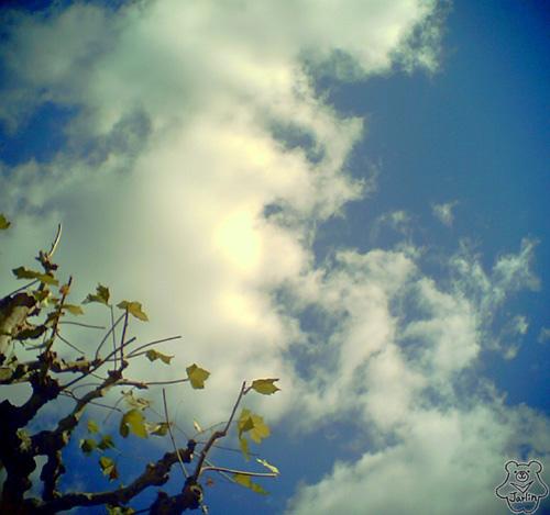03好天氣.JPG