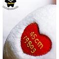 北極熊-Jay的生日熊02.jpg