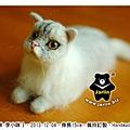 felt cat_羊毛氈貓咪_Jarlin3