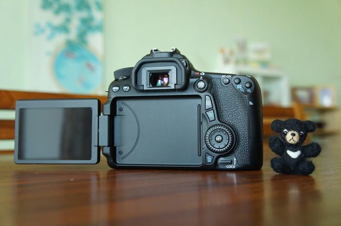 Canon 70D_Jarlin  (08).JPG