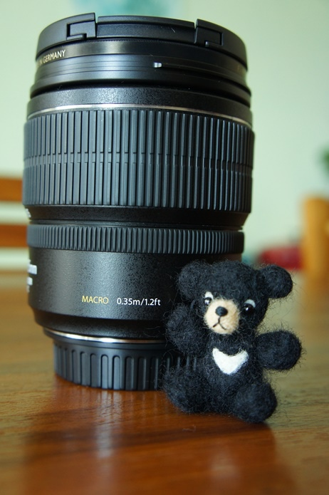 Canon 70D_Jarlin  (12).JPG