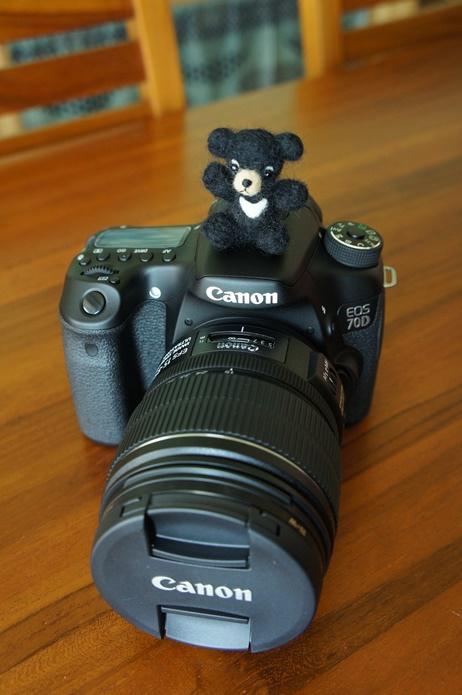 Canon 70D_Jarlin  (15).JPG