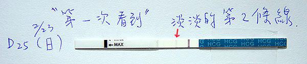 20140223_淡淡第二條線.jpg