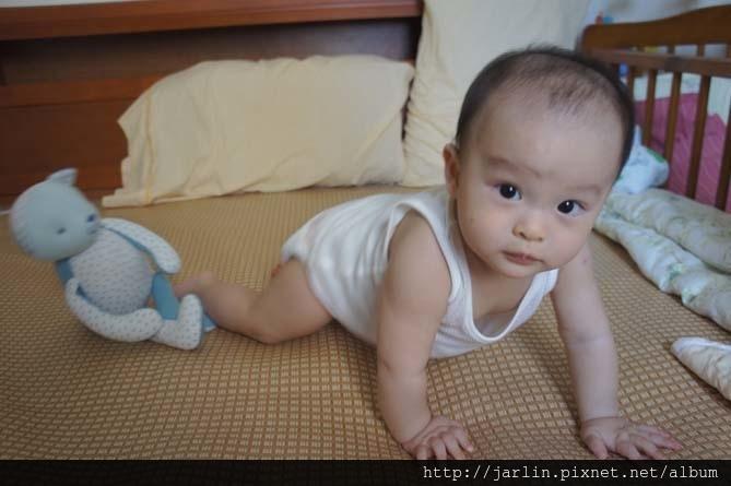 20150702_babyandbear (2).JPG