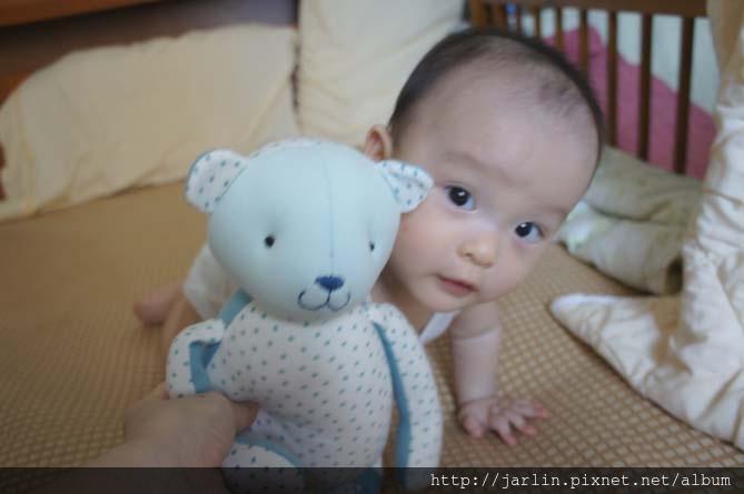 20150702_babyandbear (3).JPG