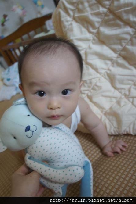 20150702_babyandbear (5).JPG
