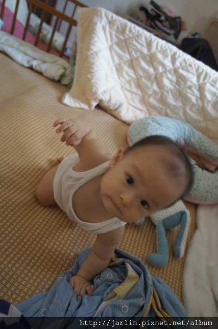 20150702_babyandbear (7).JPG