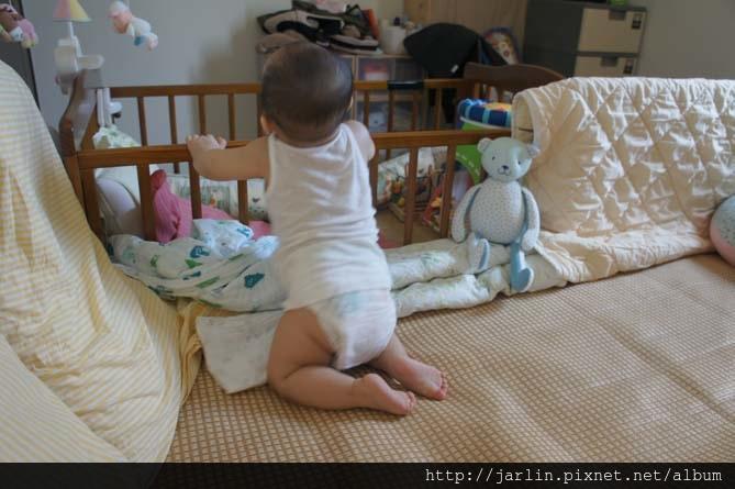 20150702_babyandbear (9).JPG