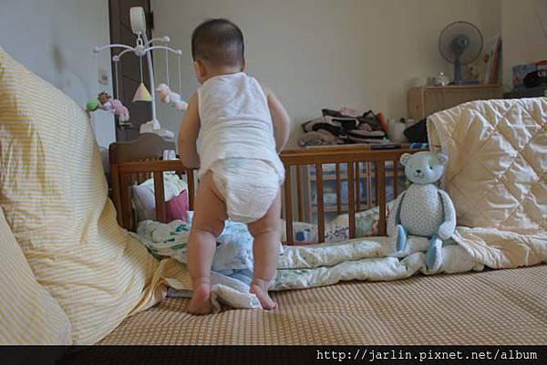 20150702_babyandbear (11).JPG