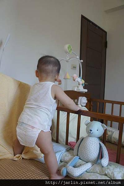 20150702_babyandbear (13).JPG