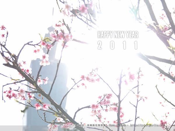 110101櫻花04.jpg