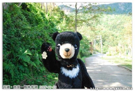 小黑熊抗議了!