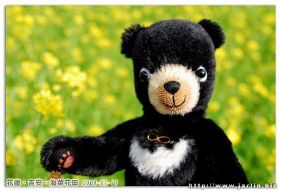 小黑熊第一次看到油菜花田