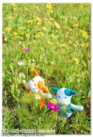 喂!兩個小傢伙怎麼跑到田裡去啦?