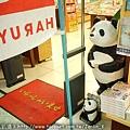 書店旁的熊貓