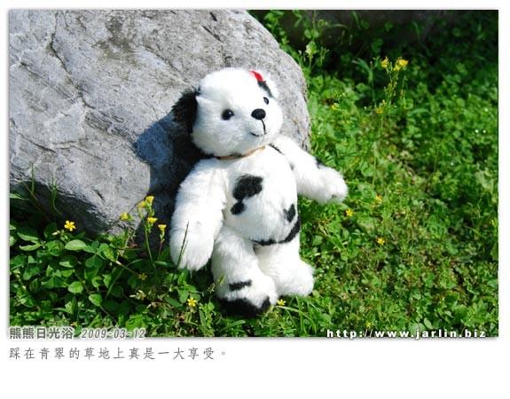 20090306_乳牛熊小妹