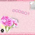 5 月_ 母親節-康乃馨