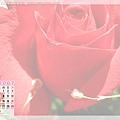 2 月_ 玫瑰花