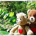 熊熊也忍不住出來欣賞綠意盎然的風景