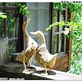 樹頭雕刻的鴨子栩栩如生