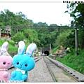 兔兔在鐵軌上的合影