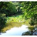 鶴岡八幡宮的蓮花池
