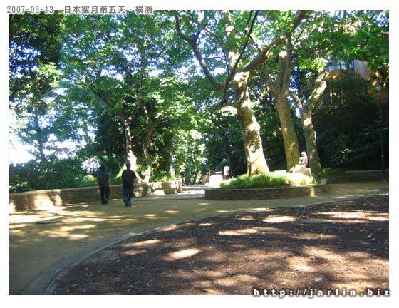 公園裡的綠意
