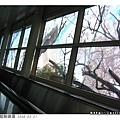 玻璃上的樹枝是真是假傻傻分不清楚...