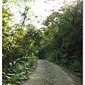 幽靜的小路,一直往下延伸,一路上只有我們兩個人...