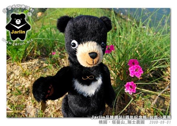 漂亮的花兒!蜂蜜趕快來採蜜吧!小黑熊我好想吃蜂蜜啊~