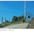 090226_清境 (28).jpg
