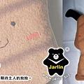 20060913_小黃狗抱枕