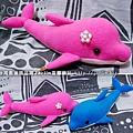 20050719_桃紅小海豚