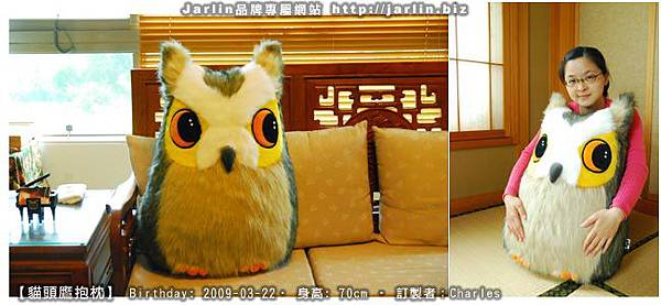 20090322_貓頭鷹大抱枕