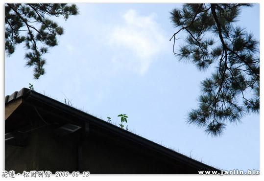 090613_松園別館 (15).jpg