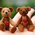20090511_巧克力迷你熊