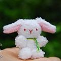 20090521_大耳兔