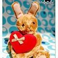 20080721_獻上真心的小兔