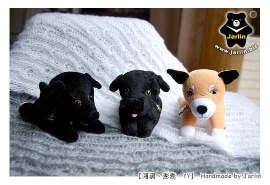 20101231_三隻狗狗01.jpg